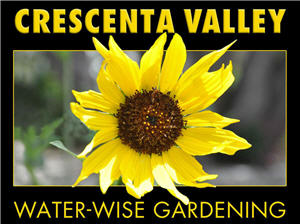 Water Wise Gardening in Crescenta Valley